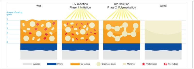 UV-coatings-curing-process