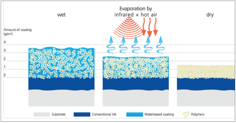 Water-based-coating-composition-drying-process